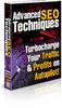 Thumbnail Advanced SEO Techniques - Turbocharge Your Traffic & Profits